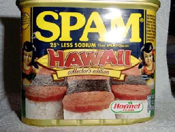 Image result for hawaii spam